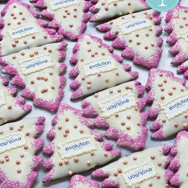 F46 - pierniki firmowe, dla firm, słodycze firmowe, reklamowe, personalizowane, evolution, słodko w ustach, warszawa, świąteczne, prezenty