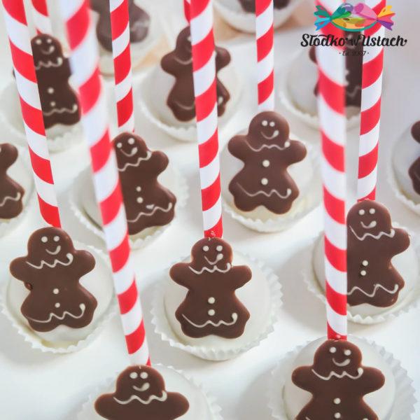 SW27 - cake pops, pops, dla firm, słodycze firmowe, reklamowe, personalizowane, słodko w ustach, warszawa, świąteczne, prezenty, z dostawą