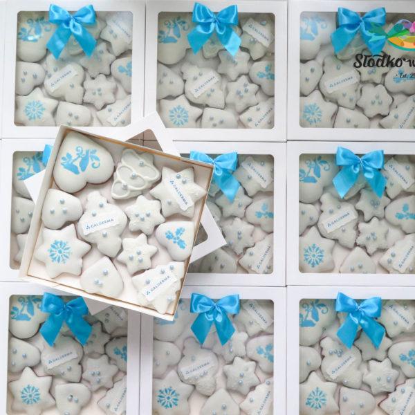 SW32 - pierniki firmowe, dla firm, słodycze firmowe, reklamowe, personalizowane,galderma, słodko w ustach, warszawa, świąteczne, prezenty