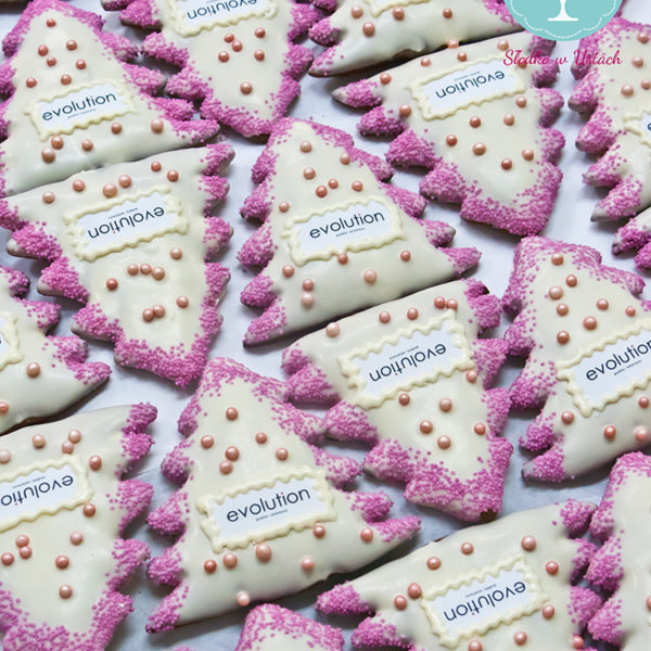 SW36 - pierniki firmowe, dla firm, słodycze firmowe, reklamowe, personalizowane, evolution, słodko w ustach, warszawa, świąteczne, prezenty