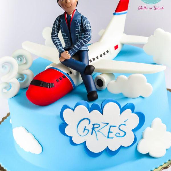 U19 - tort urodzinowy, na urodziny, samolot, steward, artystyczny, warszawa, z dostawą,