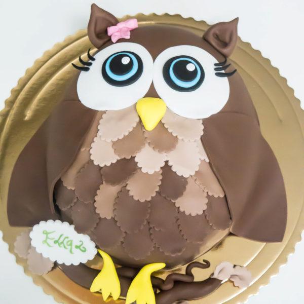 U42 - tort urodzinowy, na urodziny, dla dzieci, artystyczny, sówka, warszawa, z dostawą,