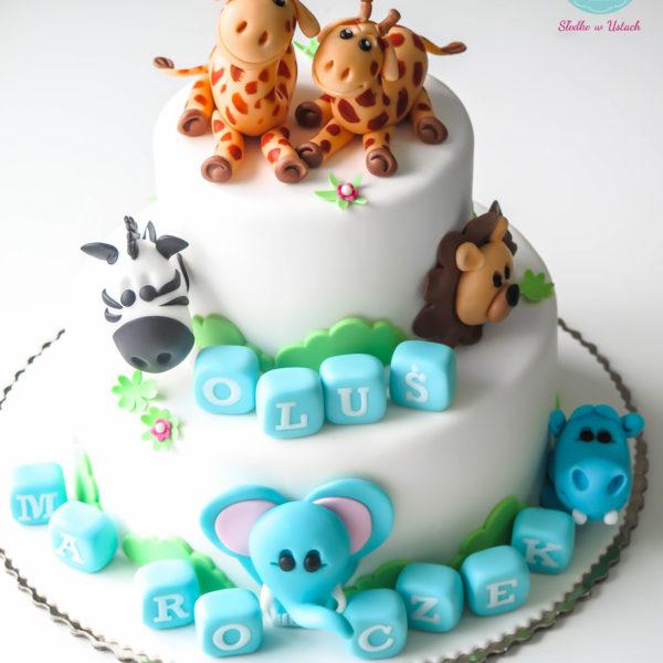 U130 - tort urodzinowy, na urodziny, dla dzieci, artystyczny, zwierzątka , warszawa, z dostawą,