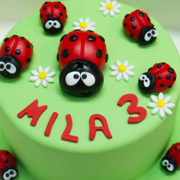U163 - tort urodzinowy, na urodziny, dla dzieci, artystyczny, biedronki, warszawa