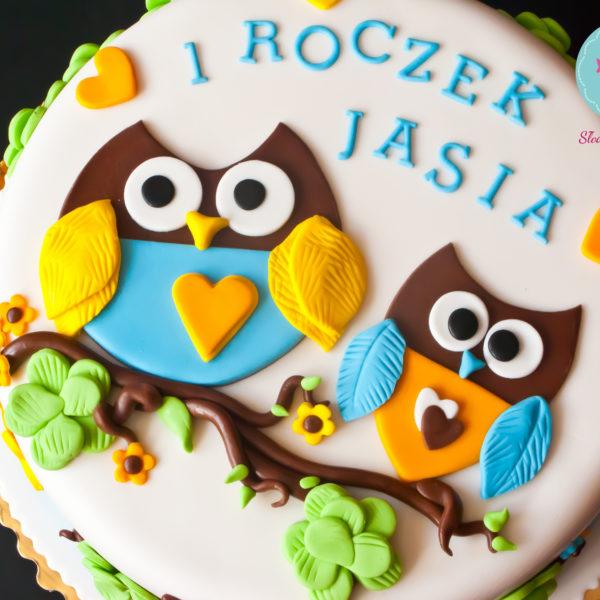 U197 - tort urodzinowy, na urodziny, dla dzieci, artystyczny, roczek, sówka, pierwsze urodziny, warszawa, z dostawą,