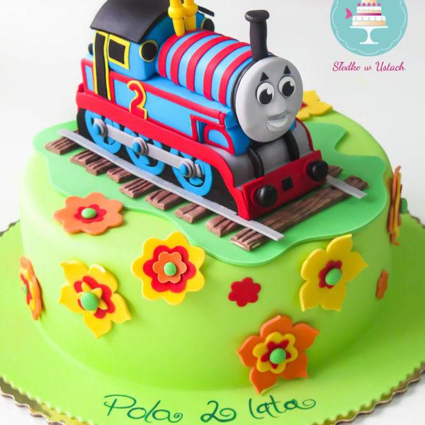 U220 - tort urodzinowy, na urodziny, dla dzieci, artystyczny, tomek i przyjaciele,