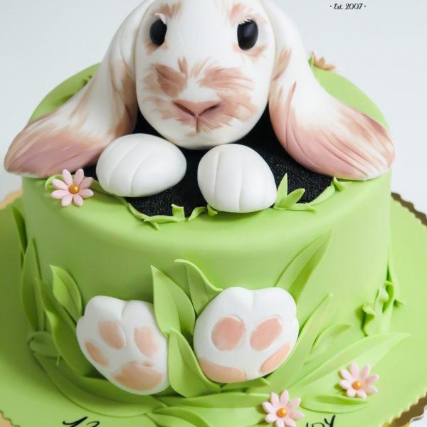 U315 - tort urodzinowy, na urodziny, artystyczny, królik, warszawa, z dostawą, konstancin jeziorna