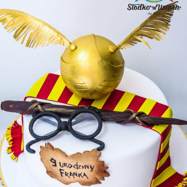 U309 - tort urodzinowy, na urodziny, dla dzieci, artystyczny, harry potter, konstancin jeziorna, warszawa