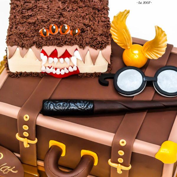 U343 - tort urodzinowy, na urodziny, dla dzieci, artystyczny, harry potter, konstancin jeziorna, warszawa