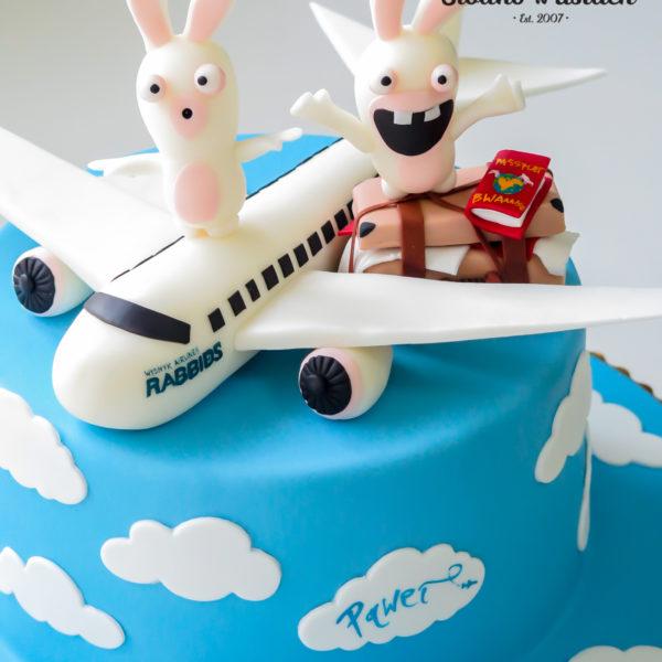 U387 - tort urodzinowy, na urodziny, samolot, pilot, szalone kórliki, rayman, artystyczny, warszawa, z dostawą,