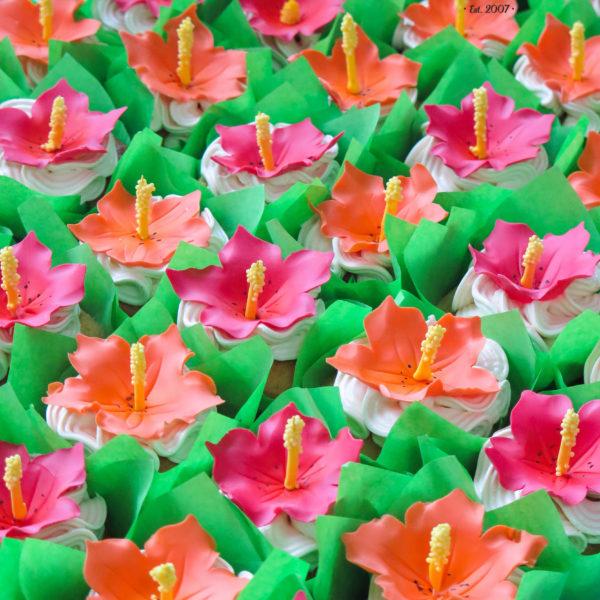 C169 - cupcakes, muffiny, hawajskie, egzotyczne, słodki stół, kącik, candy, bar , urodziny,