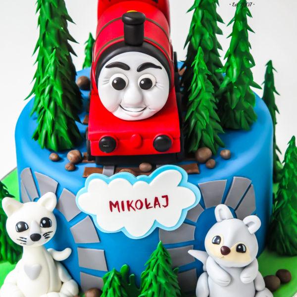 U448 - tort urodzinowy, na urodziny, dla dzieci, artystyczny, tomek i przyjaciele, warszawa,