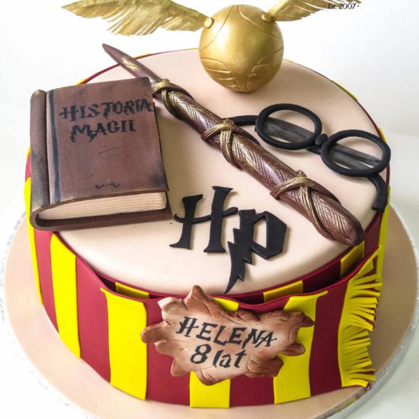 U466 - tort urodzinowy, na urodziny, dla dzieci, artystyczny, harry potter, konstancin jeziorna, warszawa