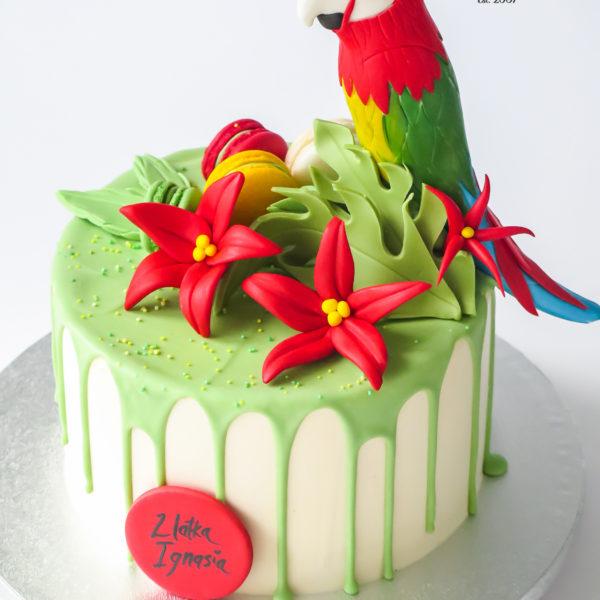 K119 - tort, z papugą, ara, drip, oblewany, bez masy cukrowej, w kremie, urodzinowy, najlepsze torty, z dostawą, z transportem, dowozem, cukiernia, warszawa, piaseczno, konstancin jeziorna, góra kalwaria, wilanów, otwock